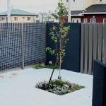 タイルデッキに植木