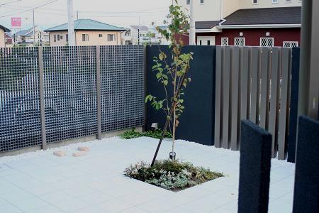テラスに植木